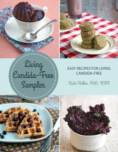 Wondering about the types of recipes in Living Candida-Free? Try out the LCF Sampler! All recipes are suitable for a #candida diet, without gluten, eggs, dairy or sugars. From snack to dessert, we've got you covered. #vegan
