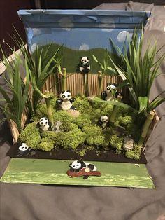 Panda habitat project