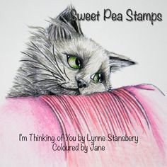 I'm Thinking of You - Lynne Stansbery available as a digi