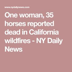 One woman, 35 horses reported dead in California wildfires - NY Daily News California Wildfires, Daily News, Horses, Woman, Women, Horse