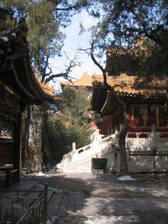 Inside the Forbidden City | Courtyard inside The Forbidden City