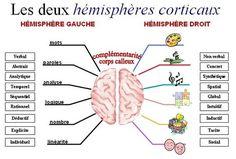 En quoi la carte heuristique peut-elle être utile en classe ? Brain Science, Brain Gym, Tony Buzan, Coaching Questions, Organization Bullet Journal, Cognitive Behavior, Always Learning, Study Materials, Mind Maps