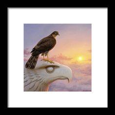 Sparrowhawk, Black Wood, Hanging Wire, Clear Acrylic, Still Life, Original Paintings, Framed Prints, Birds, Artwork