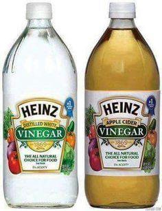 White or Apple cider tips
