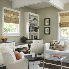 Stunning Olive Green Walls Living Room