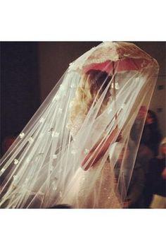 umbrella veil