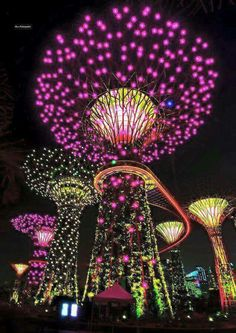 Gardens by the Bay, Simgapore