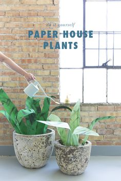 DIY large paper house plants