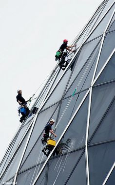 side view of gherkin cleaners
