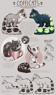 Cofficats - species sheet by Fuki-adopts.deviantart.com on @DeviantArt