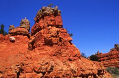 9. Red Canyon, Dixie National Forest | Community Post: 21 Beautiful Photos Of Places In Utah You Should Go See In Person