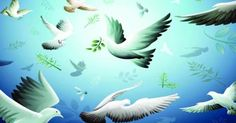Tolerance is Islam's cardinal principle