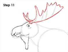 Learn how to draw a moose with this how-to video and step-by-step drawing instructions. A new animal tutorial is uploaded every week, so check beck soon for new tutorials! Hand Drawings, Animal Drawings, Pencil Drawings, Alaska Trip, Alaska Travel, Learn To Draw, How To Draw Hands, Watercolor Animals, Step By Step Drawing