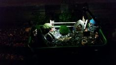 Our fairy garden with street lights
