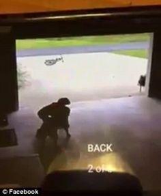Best of Web Garoto é flagrado invadindo casa. Você vai ficar sem palavras ao ver o que ele faz com o cachorro