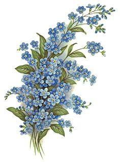 """5116 A Forget Me Not Spray Blue Waterslide Ceramic Decals By The Sheet (5 1/2"""" 6 pcs)"""