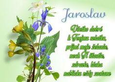 meninové priania Herbs, Plants, Blog, Herb, Blogging, Plant, Planets, Medicinal Plants