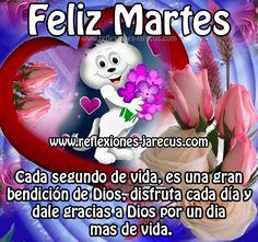 Feliz Martes, gracias a Dios por un día mas de vida