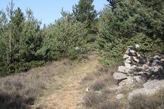 petit chemin dans les collines