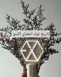 Cute Wallpapers Quotes, Cute Backgrounds, Videos Funny, Viral Videos, Bts Wallpaper Desktop, Exo Music, Exo Songs, Paper Crafts, Diy Crafts