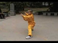 Taiji - Chen Style - A demonstration by a young apprentice.