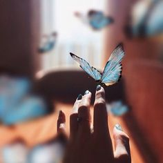 life is strange aesthetic Life Is Strange, Story Inspiration, Character Inspiration, Photo Trop Belle, Chloe Price, Blue Aesthetic, Aesthetic Vintage, The Dreamers, Images