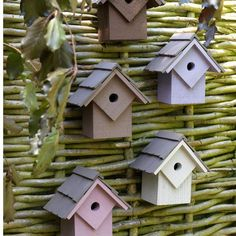 Love the idea of using bird boxes as 'wall art' .... would do this on a hedge.