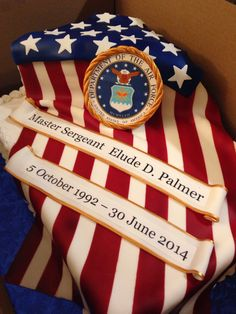 US Air Force Cake