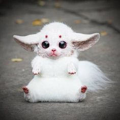 A 23 Year Old Russian Makes Creepy Yet Adorable Fantasy Dolls Cute Creatures, Magical Creatures, Fantasy Creatures, Gremlins, Minecraft Skins Animals, Santani Dolls, Animals And Pets, Cute Animals, Baby Animals