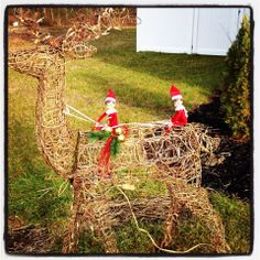 300+ Elf on the Shelf Photos  I thought this would get us back to the North Pole!