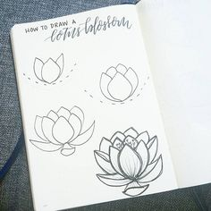 "2,310 Likes, 21 Comments - liz (@bonjournal_) on Instagram: ""I'm on vacation for the long weekend and so am posting a quick tutorial on how to draw a lotus…"""