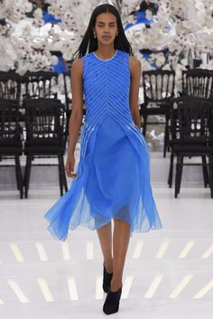 Dior Haute Couture Fall 2014 - Slideshow - Runway, Fashion Week, Fashion Shows, Reviews and Fashion Images - WWD.com