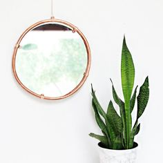 A copper hanging mirror is so easy to make & will become your new favorite home decor piece- and you made it yourself!