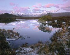 Pink Dawn Rannoch, Rannoch Moor, Glencoe, Scotland, beautiful, tree, reflected, greenery, snow, still, clouds, pinken photo