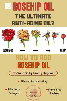 organic ROSEHIP OIL  diy anti-aging face oil diys beauty beauty beauty diy beauty natural diy for beauty diy beauty tips beauty tips diy diy natural beauty diy skincare beauty skin
