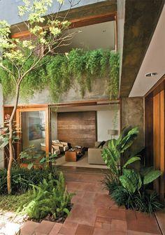 piedra + plantas + vidrio