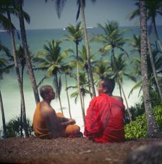 buddhist monks in Sri Lanka. Buddhist Monk, Film Photography, Sri Lanka, Medium, Painting, Art, Art Background, Painting Art, Kunst