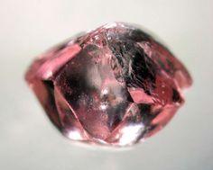 Natural pink diamond rough from Argyle mines, Australia  The same area produces champagne diamonds.
