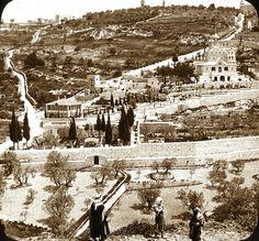 Garden of Gethsemane and Mount of Olives | Ca. 1915