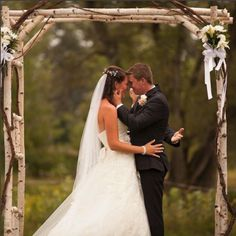 Large Birch Wedding Arch Arbor Kit