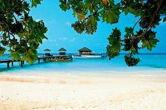 Malediivit - Finnmatkat hashtag#Finnmatkat