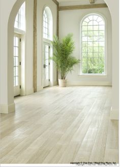 white washed wood floors | Charleston Wood Flooring Trends: Lime-Wash, Pickling and White-Wash ...