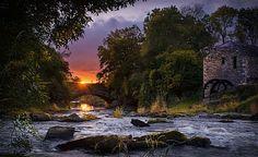 Leap Bridge by Tony Moore