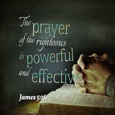 Scripture Of The Day, Scripture Verses, Bible Scriptures, Faith Quotes, Words Quotes, Sayings, Powerful Scriptures, Bubble Quotes, James 5