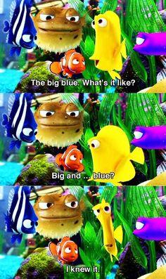 Unappreciated Finding Nemo movie line. XD Simply hilarious.