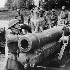 Perched on top of what looks like a howitzer, this pet dog was the regimental mascot of the artillery gunners.