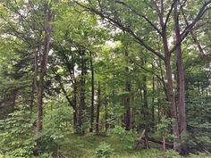 MLS # 144788 - NEW Listing! Ideal location to build your dream home out in the country yet only 3 miles from town. Rolling wooded lot with 1.18 acres of land and frontage on Rocky Shore Rd. and County N. Added bonus this property has 14 rights to a waterfront lot on beautiful and peaceful Samway Lake right across the street from this property so you can bring your fishing poles or swimming gear and enjoy the water.
