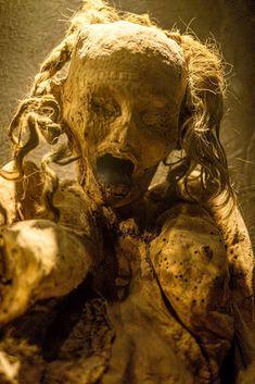 Museo de las Momias de Guanajuato- Visiting the Dead in Guanajuato | The Expat Experiment Mummy Museum, Catacombs, Macabre, Lion Sculpture, Statue, Experiment, Art, The Mummy, Museums