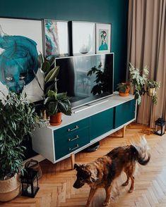 """Wnętrzności - wnętrza i życie na Instagramie: """"Ale nam zarosło w tym kącie 🌿 Te rośliny, które przeżyły zaczęły rosnąć w niesamowitym tempie 👍 mimo, że Benjamin i japonica były już na…"""" Teak, Flat Screen, Cabinet, Storage, Furniture, Home Decor, Blood Plasma, Clothes Stand, Purse Storage"""