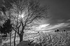 Paysage by Pascal Jeanrenaud on 500px Celestial, Sunset, Outdoor, Snow, Landscape, Sunsets, Outdoors, Outdoor Living, Garden